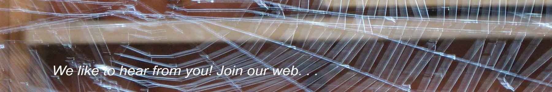 cropped-spider-web-contact-page-31.jpg