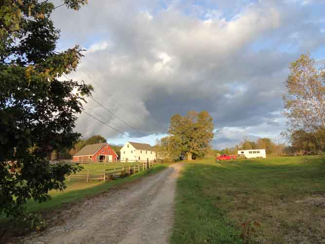 Farm view from road